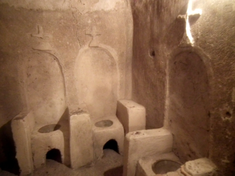 Toilets for users of psychedelic drugs
