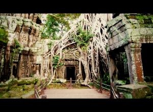 Scene from Tomb Raider, Ta Prohm